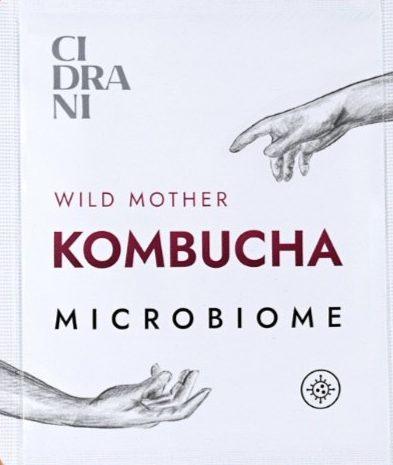 Kombucha_Wild_Mother_Microbiome