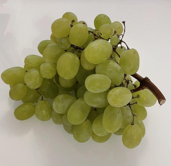 grožđe svjetlo
