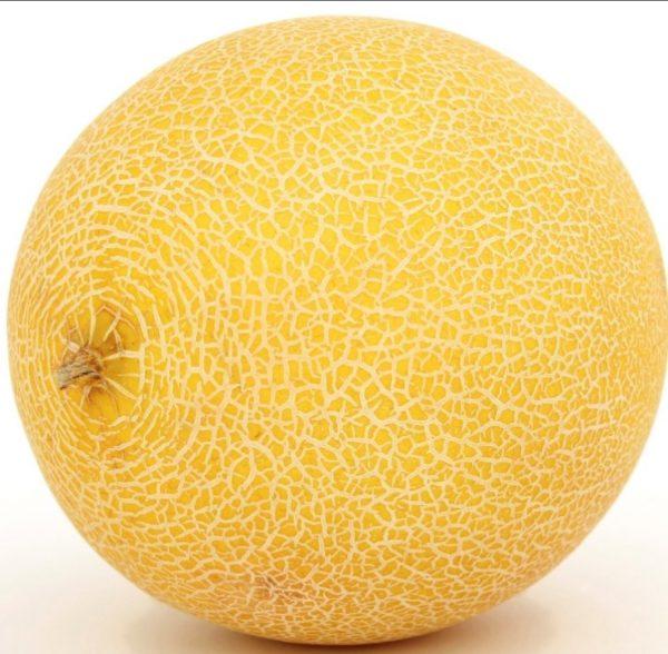 Dinja, sorta ananas